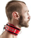 Lockable Rubber Collar in Several Colours