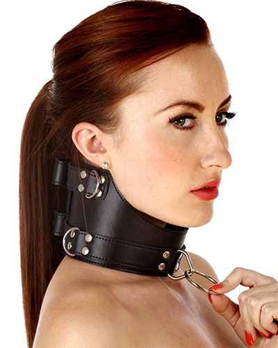 Leather Cut Out Posture Collar with D-Rings