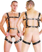 Leather Harness with Leg Straps